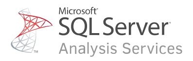SQL Server Analysis Services References
